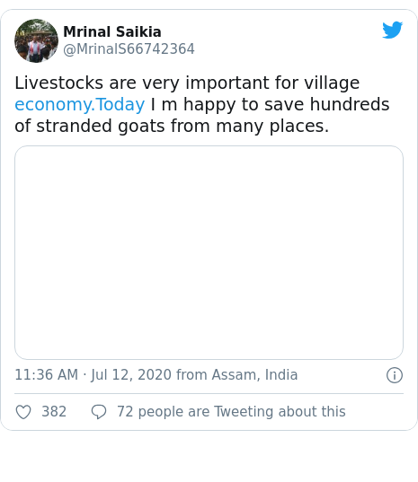 Twitter post by @MrinalS66742364: Livestocks are very important for village  I m happy to save hundreds of stranded goats from many places.