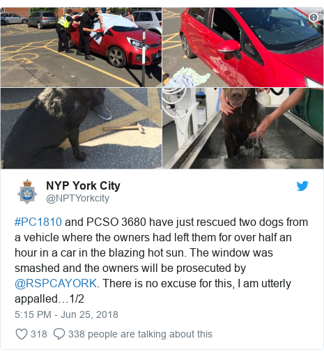 Twitter post by @NPTYorkcity: #PC1810 and PCSO 3680 have just rescued two dogs from a vehicle where the owners had left them for over half an hour in a car in the blazing hot sun. The window was smashed and the owners will be prosecuted by @RSPCAYORK. There is no excuse for this, I am utterly appalled…1/2