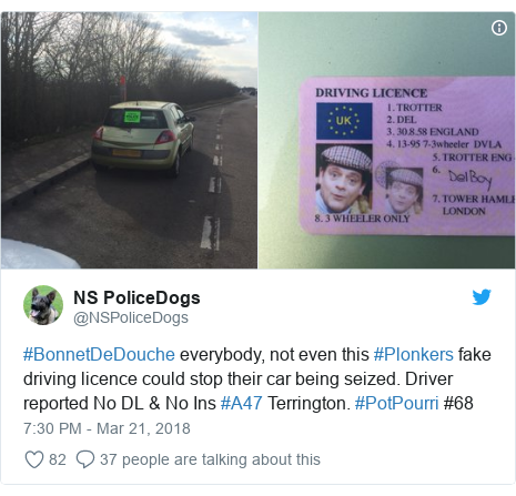 Twitter post by @NSPoliceDogs: #BonnetDeDouche everybody, not even this #Plonkers fake driving licence could stop their car being seized. Driver reported No DL & No Ins #A47 Terrington. #PotPourri #68