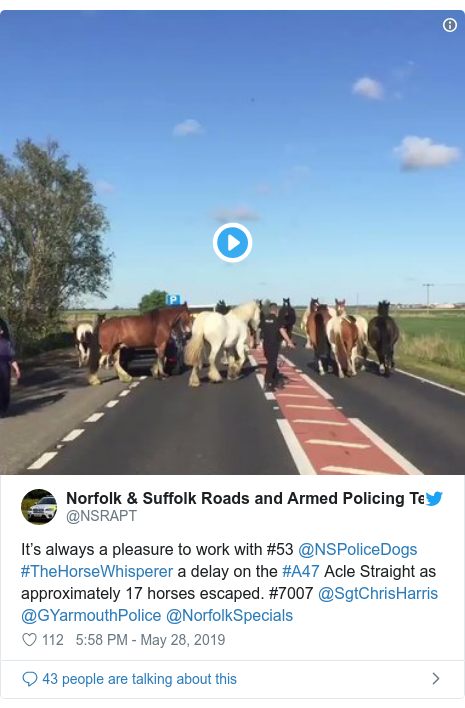 Twitter post by @NSRAPT: It's always a pleasure to work with #53 @NSPoliceDogs #TheHorseWhisperer a delay on the #A47 Acle Straight as approximately 17 horses escaped. #7007 @SgtChrisHarris @GYarmouthPolice @NorfolkSpecials