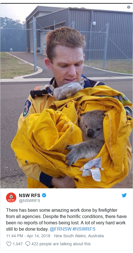 Twitter post by @NSWRFS: There has been some amazing work done by firefighter from all agencies. Despite the horrific conditions, there have been no reports of homes being lost. A lot of very hard work still to be done today. @FRNSW #NSWRFS