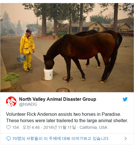 Twitter post by @NVADG: Volunteer Rick Anderson assists two horses in Paradise. These horses were later trailered to the large animal shelter.
