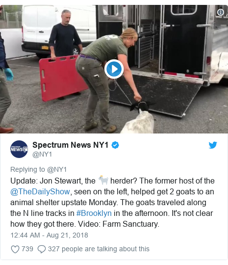 Twitter post by @NY1: Update  Jon Stewart, the 🐐 herder? The former host of the @TheDailyShow, seen on the left, helped get 2 goats to an animal shelter upstate Monday. The goats traveled along the N line tracks in #Brooklyn in the afternoon. It's not clear how they got there. Video  Farm Sanctuary.