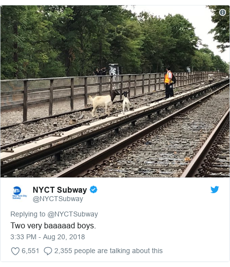 Twitter post by @NYCTSubway: Two very baaaaad boys.