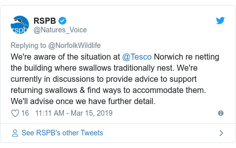 Twitter post by @Natures_Voice: We're aware of the situation at @Tesco Norwich re netting the building where swallows traditionally nest. We're currently in discussions to provide advice to support returning swallows & find ways to accommodate them. We'll advise once we have further detail.