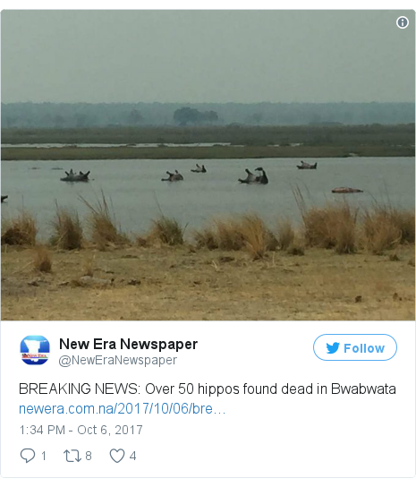 Twitter post by @NewEraNewspaper: BREAKING NEWS  Over 50 hippos found dead in Bwabwata https //t.co/2xWRE0twW5 pic.twitter.com/xwp95YVf02