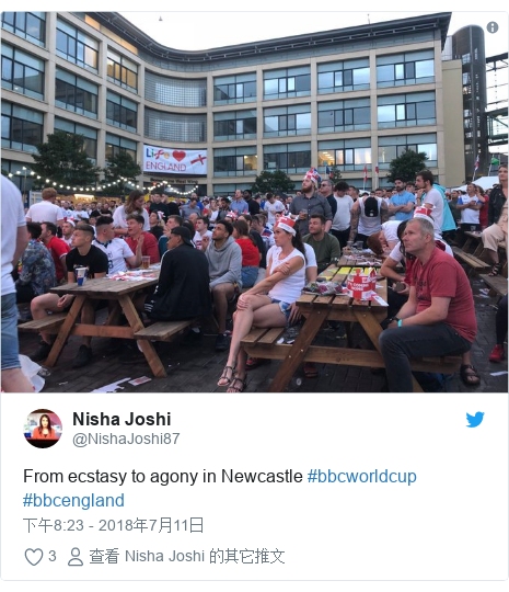 Twitter 用户名 @NishaJoshi87: From ecstasy to agony in Newcastle #bbcworldcup #bbcengland