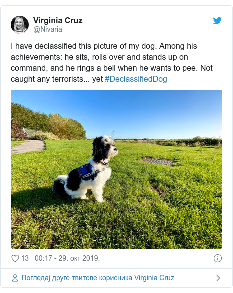 Twitter post by @Nivaria: I have declassified this picture of my dog. Among his achievements  he sits, rolls over and stands up on command, and he rings a bell when he wants to pee. Not caught any terrorists... yet #DeclassifiedDog