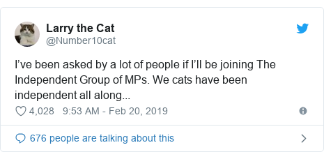 Twitter post by @Number10cat: I've been asked by a lot of people if I'll be joining The Independent Group of MPs. We cats have been independent all along...