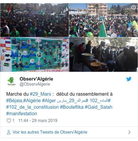 Twitter publication par @ObservAlgerie: Marche du #29_Mars    début du rassemblement à #Béjaia.#Algérie #Alger #حراك_29_مارس #الماده_102 #102_de_la_constitusion #Bouteflika #Gaid_Salah #manifestation