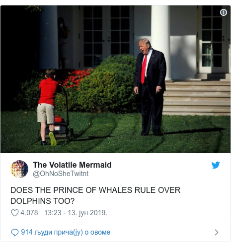 Twitter post by @OhNoSheTwitnt: DOES THE PRINCE OF WHALES RULE OVER DOLPHINS TOO?