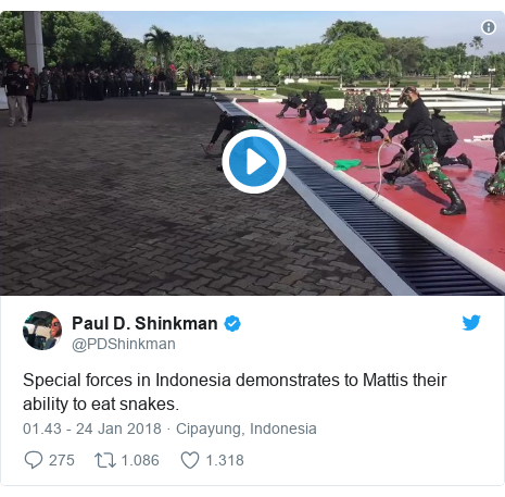 Twitter pesan oleh @PDShinkman: Special forces in Indonesia demonstrates to Mattis their ability to eat snakes.