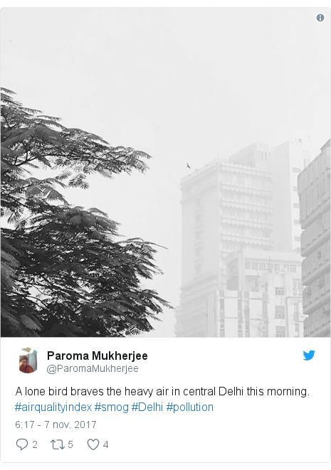 Publicación de Twitter por @ParomaMukherjee: A lone bird braves the heavy air in central Delhi this morning. #airqualityindex #smog #Delhi #pollution