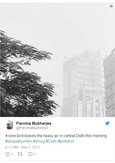 Twitter post by @ParomaMukherjee: A lone bird braves the heavy air in central Delhi this morning. #airqualityindex #smog #Delhi #pollution