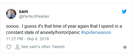 Twitter post by @PerfectPeletier: soooo.. I guess it's that time of year again that I spend in a constant state of anxiety/horror/panic #spiderseason