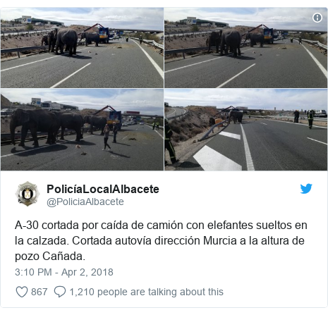 Twitter waxaa daabacay @PoliciaAlbacete: A-30 cortada por caída de camión con elefantes sueltos en la calzada. Cortada autovía dirección Murcia a la altura de pozo Cañada.
