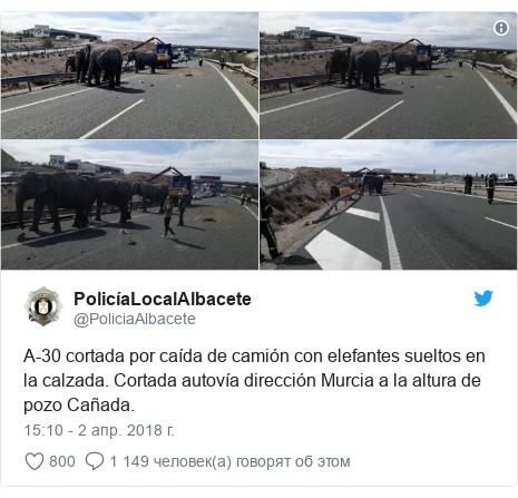 Twitter post by @PoliciaAlbacete: A-30 cortada por caída de camión con elefantes sueltos en la calzada. Cortada autovía dirección Murcia a la altura de pozo Cañada.