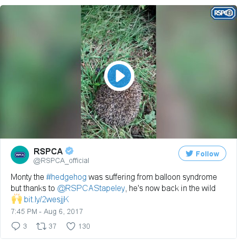 Twitter post by @RSPCA_official