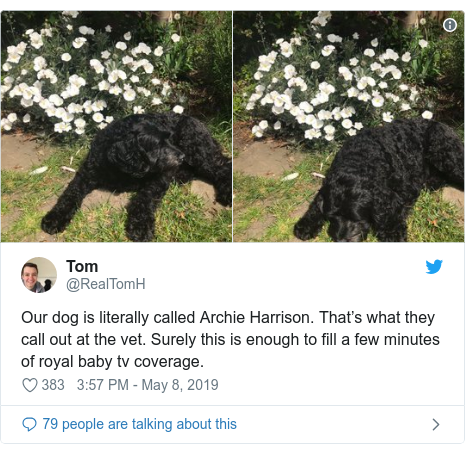 Twitter post by @RealTomH: Our dog is literally called Archie Harrison. That's what they call out at the vet. Surely this is enough to fill a few minutes of royal baby tv coverage.