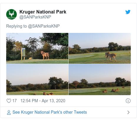 Twitter post by @SANParksKNP: