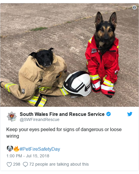 Twitter post by @SWFireandRescue: Keep your eyes peeled for signs of dangerous or loose wiring 🐶🔥#PetFireSafetyDay