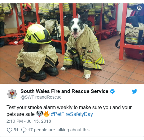 Twitter post by @SWFireandRescue: Test your smoke alarm weekly to make sure you and your pets are safe 🐶🔥 #PetFireSafetyDay