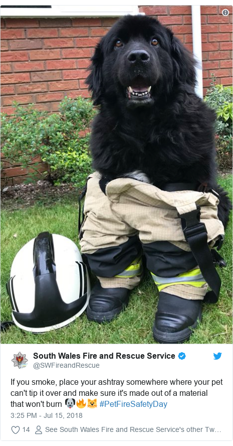 Twitter post by @SWFireandRescue: If you smoke, place your ashtray somewhere where your pet can't tip it over and make sure it's made out of a material that won't burn 🐶🔥🐱 #PetFireSafetyDay