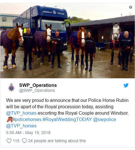 Twitter post by @SWP_Operations: We are very proud to announce that our Police Horse Rubin will be apart of the Royal procession today, assisting @TVP_horses escorting the Royal Couple around Windsor. 🐴#policehorses #RoyalWeddingTODAY @swpolice @TVP_horses