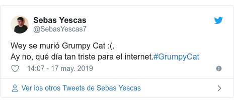 Publicación de Twitter por @SebasYescas7: Wey se murió Grumpy Cat  (.Ay no, qué día tan triste para el internet.#GrumpyCat