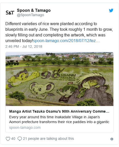 Twitter post by @SpoonTamago: Different varieties of rice were planted according to blueprints in early June. They took roughly 1 month to grow, slowly filling out and completing the artwork, which was unveiled today!