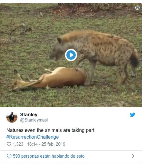 Publicación de Twitter por @Stanleymasi: Natures even the animals are taking part #ResurrectionChallenge