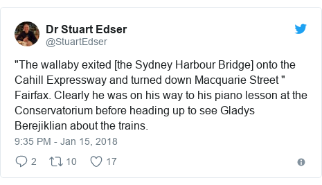"""Twitter post by @StuartEdser: """"The wallaby exited [the Sydney Harbour Bridge] onto the Cahill Expressway and turned down Macquarie Street """" Fairfax. Clearly he was on his way to his piano lesson at the Conservatorium before heading up to see Gladys Berejiklian about the trains."""