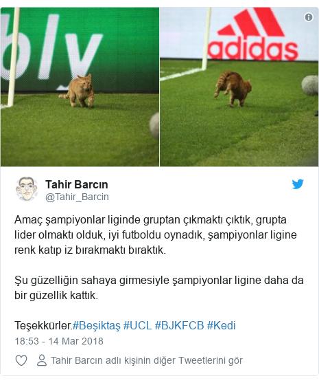@Tahir_Barcin tarafından yapılan Twitter paylaşımı: Amaç şampiyonlar liginde gruptan çıkmaktı çıktık, grupta lider olmaktı olduk, iyi futboldu oynadık, şampiyonlar ligine renk katıp iz bırakmaktı bıraktık.Şu güzelliğin sahaya girmesiyle şampiyonlar ligine daha da bir güzellik kattık.Teşekkürler.#Beşiktaş #UCL #BJKFCB #Kedi