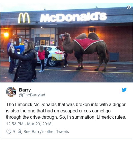 Twitter post by @TheBarrylad: The Limerick McDonalds that was broken into with a digger is also the one that had an escaped circus camel go through the drive-through. So, in summation, Limerick rules.