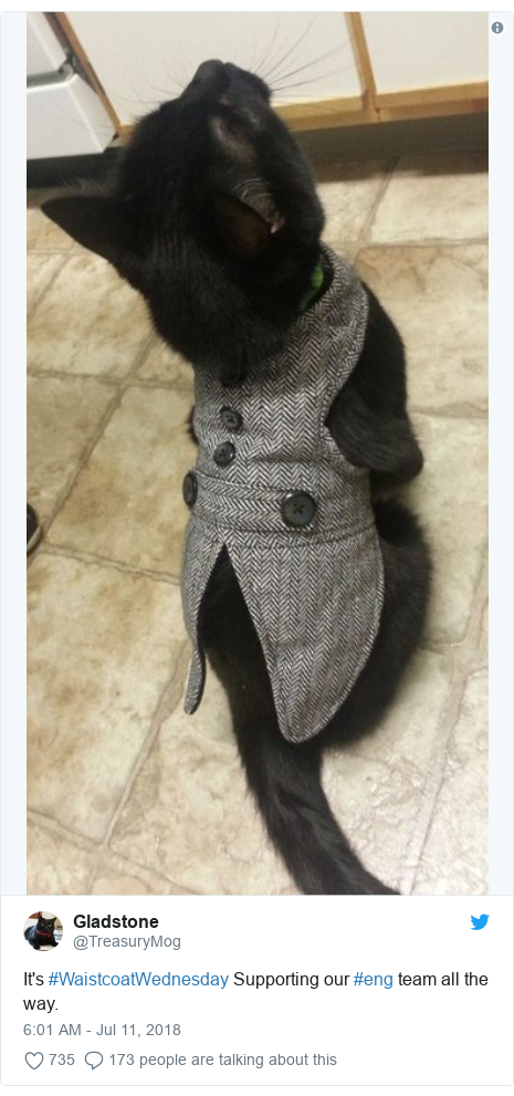 Twitter post by @TreasuryMog: It's #WaistcoatWednesday Supporting our #eng team all the way.