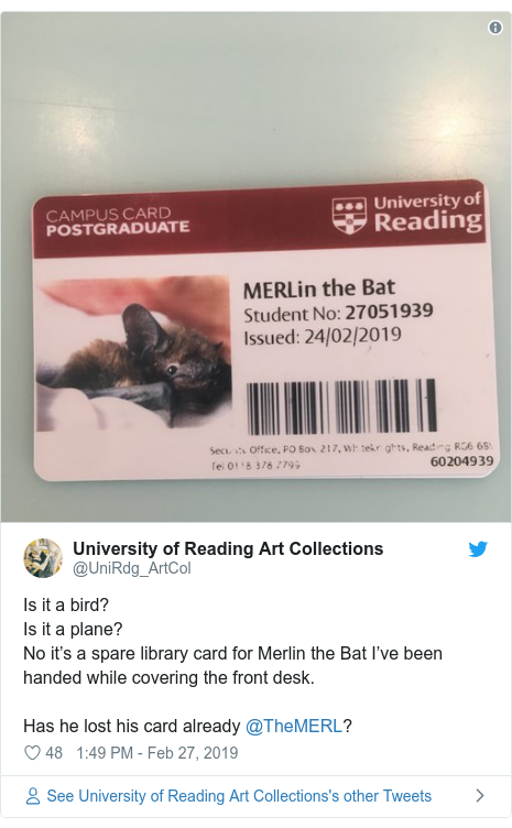 Twitter post by @UniRdg_ArtCol: Is it a bird?Is it a plane?No it's a spare library card for Merlin the Bat I've been handed while covering the front desk.Has he lost his card already @TheMERL?