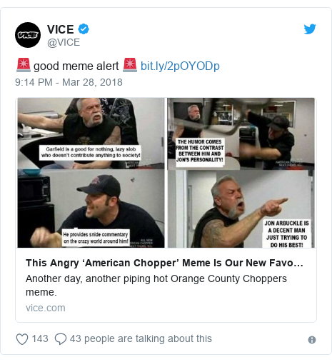 Twitter post by @VICE: 🚨 good meme alert 🚨