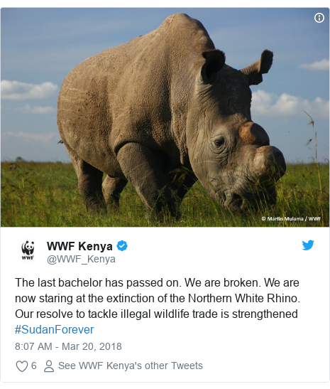 Ujumbe wa Twitter wa @WWF_Kenya: The last bachelor has passed on. We are broken. We are now staring at the extinction of the Northern White Rhino. Our resolve to tackle illegal wildlife trade is strengthened #SudanForever