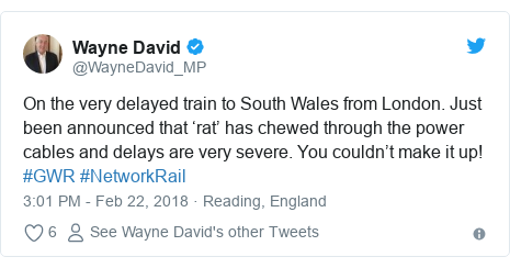 Twitter post by @WayneDavid_MP: On the very delayed train to South Wales from London. Just been announced that 'rat' has chewed through the power cables and delays are very severe. You couldn't make it up! #GWR #NetworkRail