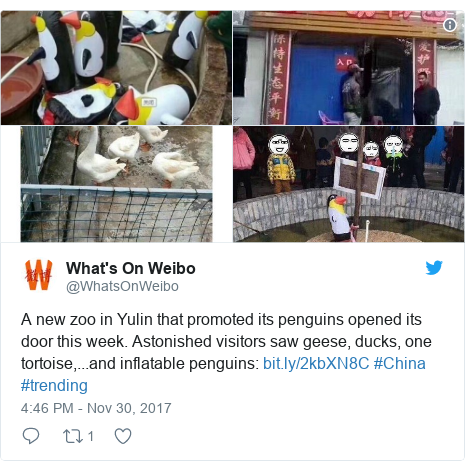 Twitter post by @WhatsOnWeibo: A new zoo in Yulin that promoted its penguins opened its door this week. Astonished visitors saw geese, ducks, one tortoise,...and inflatable penguins   #China #trending