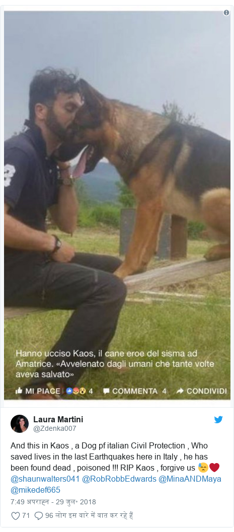 ट्विटर पोस्ट @Zdenka007: And this in Kaos , a Dog pf italian Civil Protection , Who saved lives in the last Earthquakes here in Italy , he has been found dead , poisoned !!! RIP Kaos , forgive us 😓❤️@shaunwalters041 @RobRobbEdwards @MinaANDMaya @mikedef665