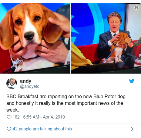 Twitter post by @andyetc: BBC Breakfast are reporting on the new Blue Peter dog and honestly it really is the most important news of the week.