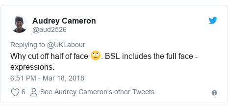 Twitter post by @aud2526: Why cut off half of face 🙄. BSL includes the full face - expressions.
