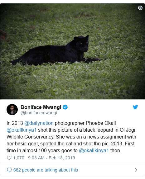 Ujumbe wa Twitter wa @bonifacemwangi: In 2013 @dailynation photographer Phoebe Okall @okallkinya1 shot this picture of a black leopard in Ol Jogi Wildlife Conservancy. She was on a news assignment with her basic gear, spotted the cat and shot the pic. 2013. First time in almost 100 years goes to @okallkinya1 then.