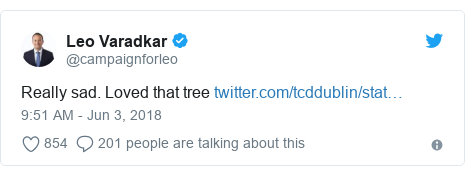 Twitter post by @campaignforleo: Really sad. Loved that tree