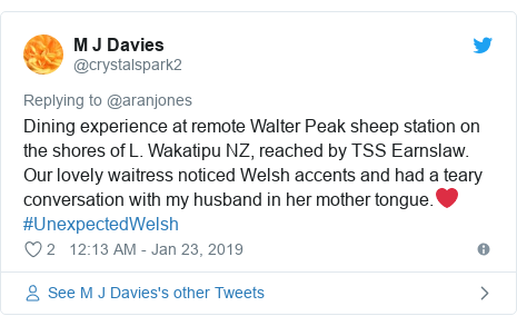Twitter post by @crystalspark2: Dining experience at remote Walter Peak sheep station on the shores of L. Wakatipu NZ, reached by TSS Earnslaw. Our lovely waitress noticed Welsh accents and had a teary conversation with my husband in her mother tongue.❤️ #UnexpectedWelsh