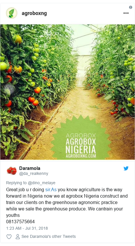 Twitter post by @da_realkenny: Great job u r doing  you know agriculture is the way forward in Nigeria now we at agrobox Nigeria construct and train our clients on the greenhouse agronomic practice while we sale the greenhouse produce. We cantrain your youths08137575664