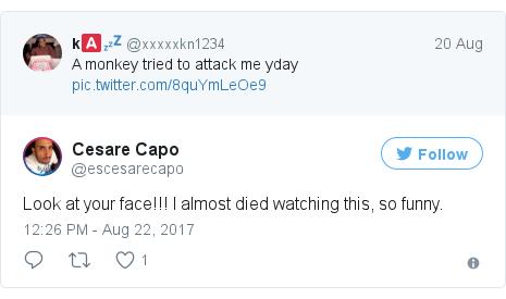 Twitter post by @escesarecapo