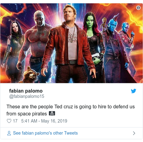 Twitter post by @fabianpalomo15: These are the people Ted cruz is going to hire to defend us from space pirates 🏴☠️