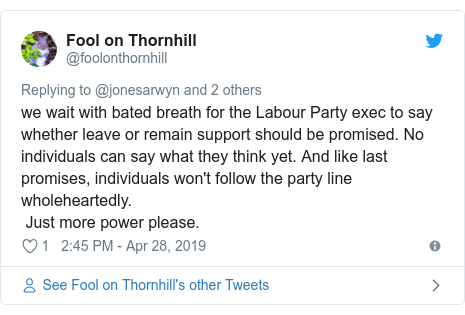 Twitter post by @foolonthornhill: we wait with bated breath for the Labour Party exec to say whether leave or remain support should be promised. No individuals can say what they think yet. And like last promises, individuals won't follow the party line wholeheartedly. Just more power please.